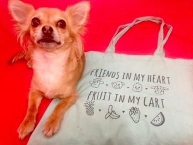 Jade Green Vegan bag Chihuahua approved